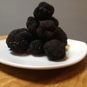 black truffle, tartufo nero