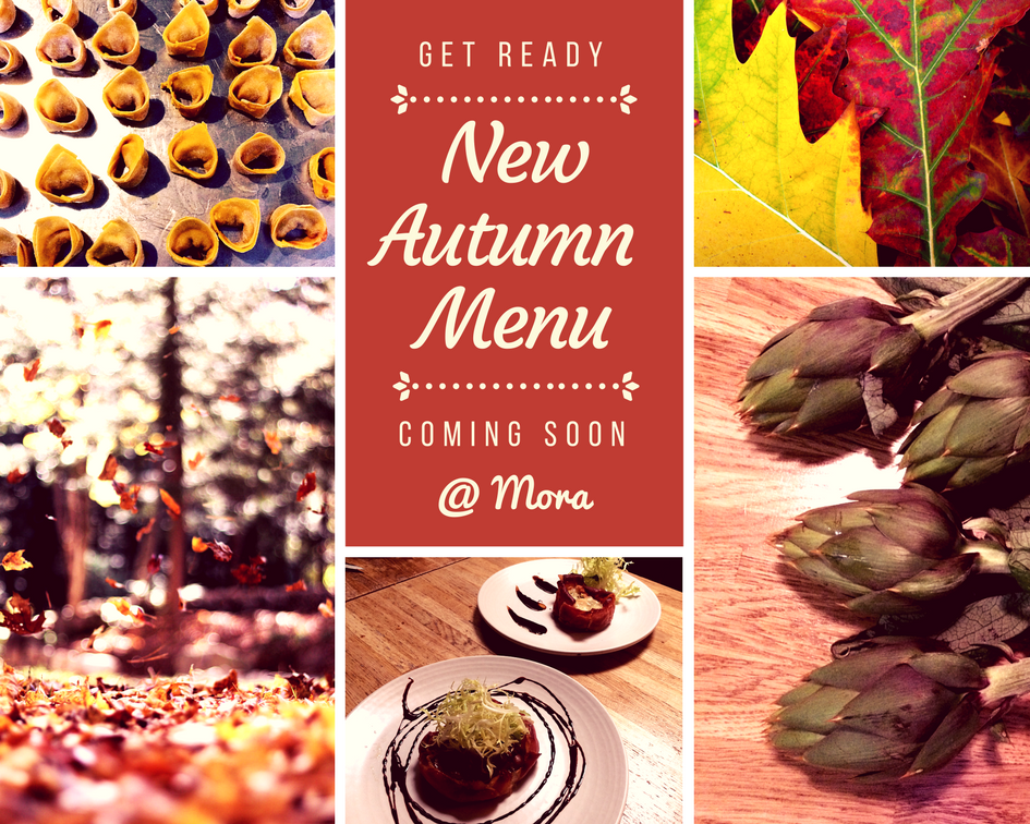 new autumn menu launch